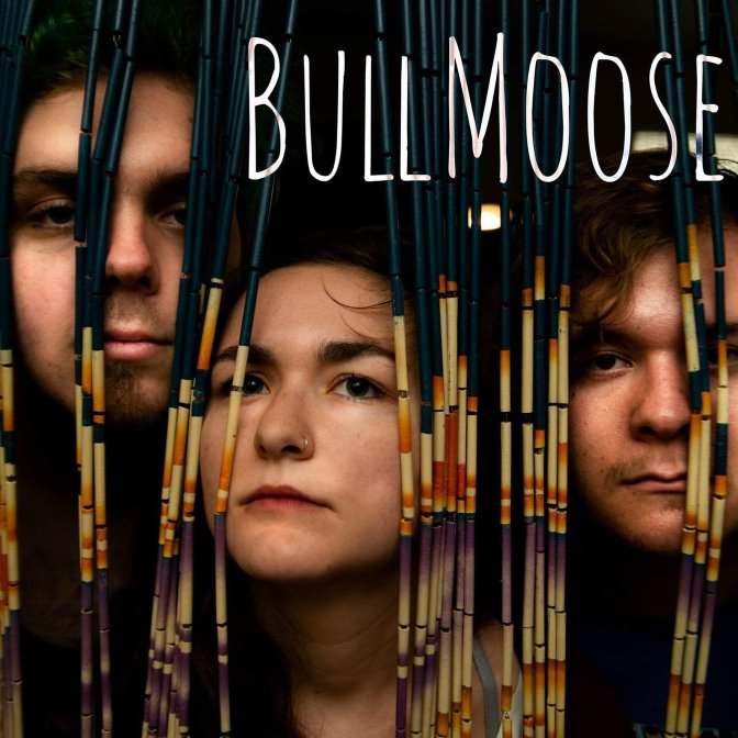BullMoose: new favourite band